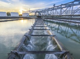 Water, Sewerage and Sanitation